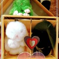 Jual gantungan tas rabbit kelinci bunny gift box Murah
