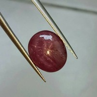 Jual DGL Certified Big,Looking Nice,No Heat 6.50 Ct Red STAR RUBY Tanzania Murah