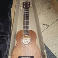 Jual ukulele solid murah Original Murah