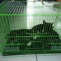 Jual Kandang lipat besi kucing kelinci Sugar glider Size M Murah
