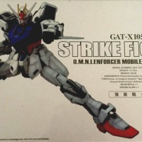 Gundam GAT-X105 Strike 1:60 PG Perfect Grade Daban Model