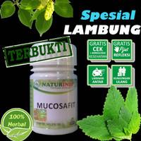 Obat Herbal Lambung Spesial Mucosafit Naturindo