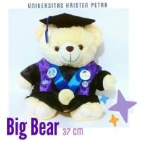 boneka teddy bear wisuda sarjana ui dan petra surabaya