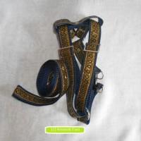 Set Harnes Harness Tali Tuntun Anjing Sedang Kucing Maine coon
