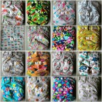 Jual Clodi babyland+2insert,cloth diapers,popok,pampers kain hadiah bayi Murah