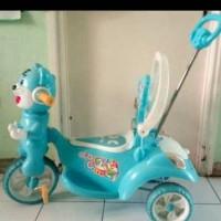Sepeda Anak Unik dan Kokoh (diambil langsung)