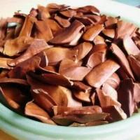 Promo 100 biji benih / bibit mahoni (Swietenia Mahagoni L. Jacq)