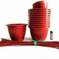 pot gantung / pot tanaman gantung
