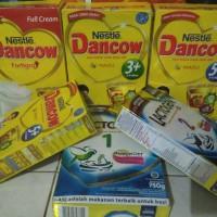 dancow susu