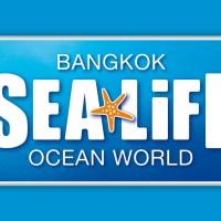 Harga sea life bangkok ocean world aquarium tiket dewasa thailand | antitipu.com