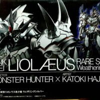 Monster Hunter G Rank Henkei LIOLAEUS Rare Species Weathering Silver