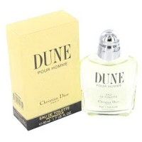 Parfum Christian Dior Dune for Men EDT 100ml Original
