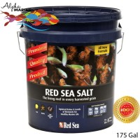 Red Sea Salt 22kg