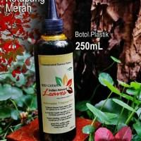 Ekstrak Daun ketapang Merah 250mL Indian Almond Premium Quality