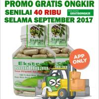 Jual Green Coffee Slimming 500 - Kopi Hijau Pelangsing 500 Murah