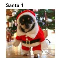 Jual Baju Santa anjing kucing pakaian hewan natal dog cat christmas costume Murah