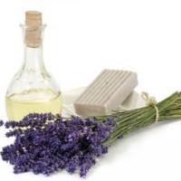 Fragrance Oil Lavender 20 Ml