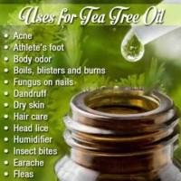 Tea Tree Oil/Pure Essential Oil 5 Ml