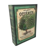 Jual Brankas Buku Antik Jadul Kuno - LARGE SIZE - Peacock Murah