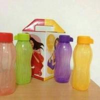 harga Tupperware Eco Bottle 310ml (botol Minum Kecil) Diskon Promo Tokopedia.com