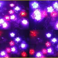 Jual Lampu Kabel Bintang Star LED Warna Hiasan Dekorasi Unik Pohon Natal Murah