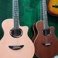 Gitar Akustik Yamaha Apx 500 ii equalizer