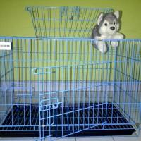 harga Khusus Paket Kandang Besi Tebal Anjing Kucing Musang Xl 75. Tokopedia.com