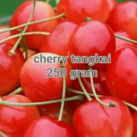 Jual Buah Cherry Merah Tangkai Hiasan Kue/CupCake Siap Pakai 250 Gram Murah