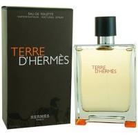 Parfum Ori Terre D ' Hermes EDT 100 Ml [ No Box ]