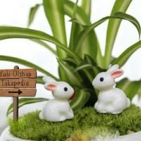 Jual Miniature Kelinci Putih Dekorasi Terrarium Mini Garden Murah