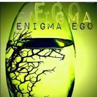 Enigma Ego-novel