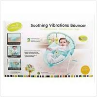 Mastela Soothing Vibrations bouncer