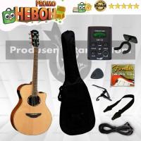 PAKET Gitar Akustik Elektrik Yamaha APX 500ii (yamaha akustik)