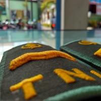 pangkat PDH TNI-AD