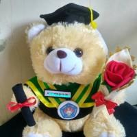 Jual Boneka wisuda Teddy Bear +Bucket Murah