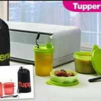 Jual Tupperware Festive Set Murah