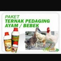 paket vitamin ternak ayam petelor pedaging / ternak bebek pedaging