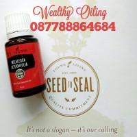 Melaleuca Alternifolia Repack 2ml Young Living Essential Oil