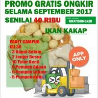Jual Pempek Palembang QQ Paket Sedang isi 30 Murah