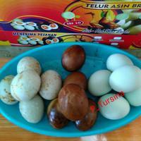 Telur Asin Brebes Tursina 4ori,4bakar,4oven