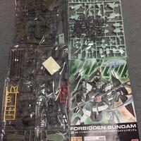 HG forbidden gundam