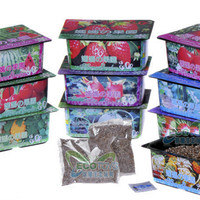 Kebun tanaman mini buah sayur Mama Garden Creative Product Farm HHM356