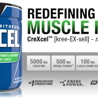 ANS PERFORMANCE CREXCEL 40x serving FREE SHAKER