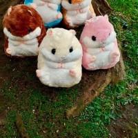 Jual Bantal Selimut (BALMUT) Coron Hamster Murah