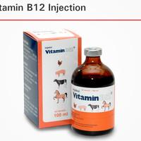 injeksi vit b12 100 ml untuk anemia pada hewan obat hewan