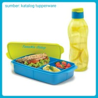Cool Teen Tupperware - Murah Bergaransi