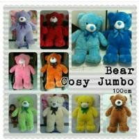 Boneka Teddy Bear Jumbo 100cm