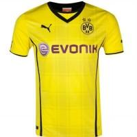 Dortmund home 2013/14