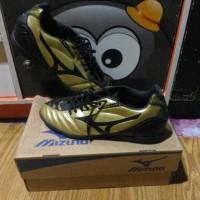 Sepatu Futsal Mizuno Ignitus 3 In