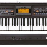Keyboard Roland E09 / Roland E-09 / Roland E 09